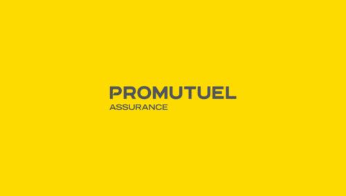 Promutual Assurance